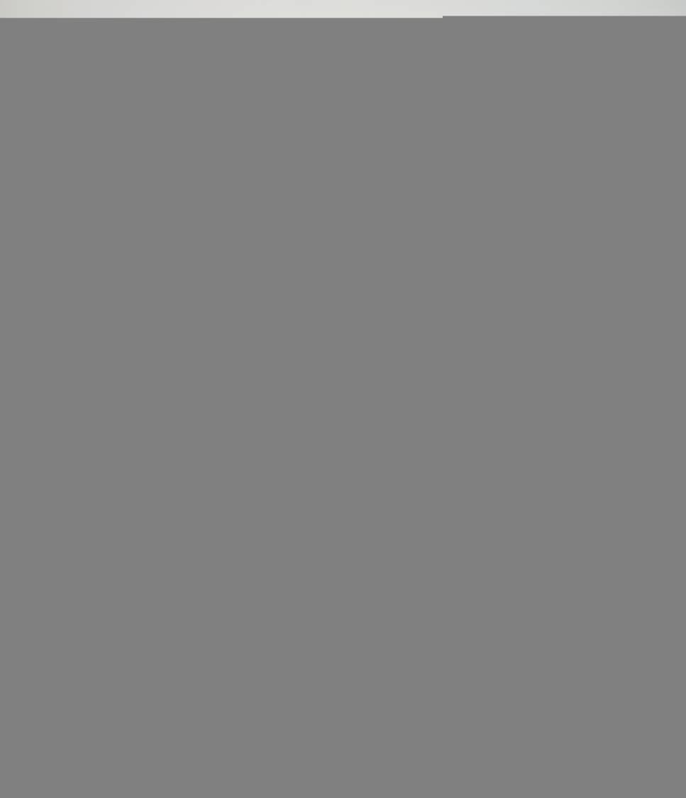 RAINFOREST M SUM 2 BLACK 041